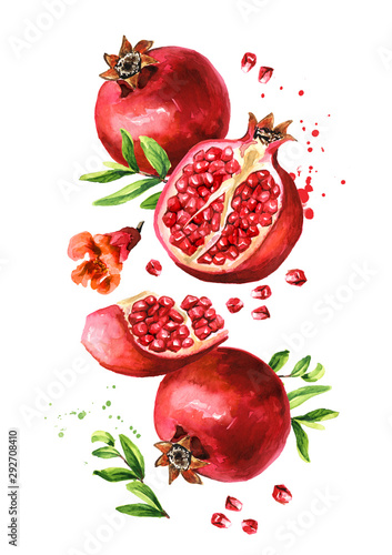 Flying fresh ripe whole and cut pomegranate with seeds, flower and leaves. Watercolor hand drawn illustration, isolated on white background