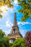 Der Eiffelturm in Paris an einem wunderschönen Sommertag mit strahlender Sonne und umrahmt von Pflanzen