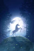 Fairy Tale Unicorn In A Moonlight Night Forest - 3D Rendering