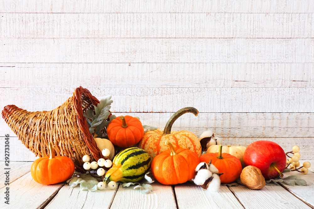Fototapety, obrazy: Thanksgiving cornucopia filled with autumn vegetables and pumpkins against a rustic white wood background