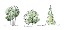 Types Of Trees, Bushes, Tree Watercolor Sketches For Landscape Design. Vector Illustration, Hand Drawn, Isolated On White Background.