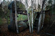 Fallen Tree On Abandoned Truck...