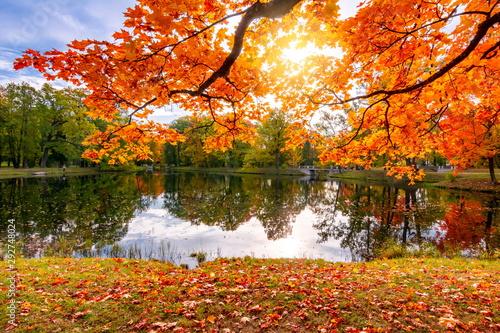 Foto auf Leinwand Wasserfalle Golden autumn (fall) in Alexander park, Tsarskoe Selo (Pushkin), Saint Petersburg, Russia