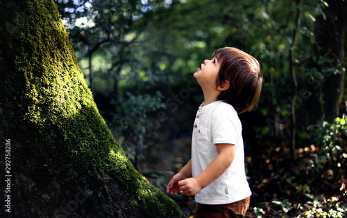 Obraz Cute little curious boy standing in deep dark forest at old tree covered with green moss looking up waiting for magic. Inquisitive childhood. - fototapety do salonu