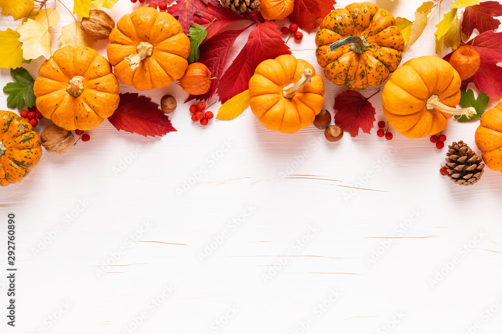 Fototapeta Festive autumn pumpkins decor with fall leaves, berries, nuts on white background. Thanksgiving day or halloween holiday, harvest concept. Top view flat lay composition with copy space for greeting