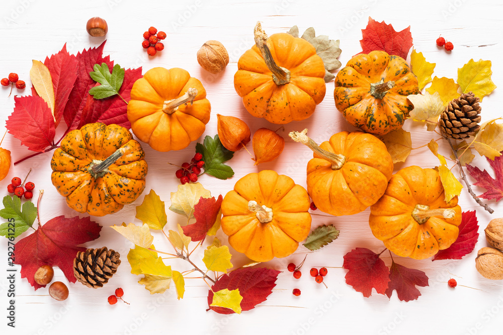 Fototapety, obrazy: Festive autumn pumpkins decor with fall leaves, berries, nuts on white background. Thanksgiving day or halloween holiday, harvest concept. Top view flat lay composition with copy space for greeting