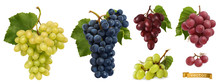 Wine Grapes, Table Grapes. Fre...