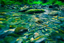 River With Rocks And Moss