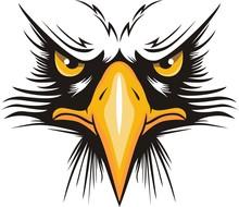 Eagle Head Logo For T-shirt, Hawk Mascot Sport Wear Typography Emblem Graphic, Athletic Apparel Stamp.