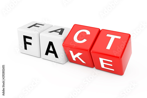 Cube Blocks with the Transition from Fake to Fact Word Canvas Print