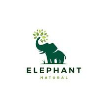 Elephant Leaf Leaves Tree Logo...