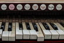 Detail Of Old, Broken And Dusty Organ Keys