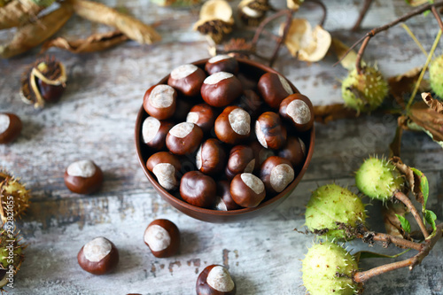 Poster Individuel Chestnuts in a bowl. Buckeyes. Autumn composition with chestnuts.