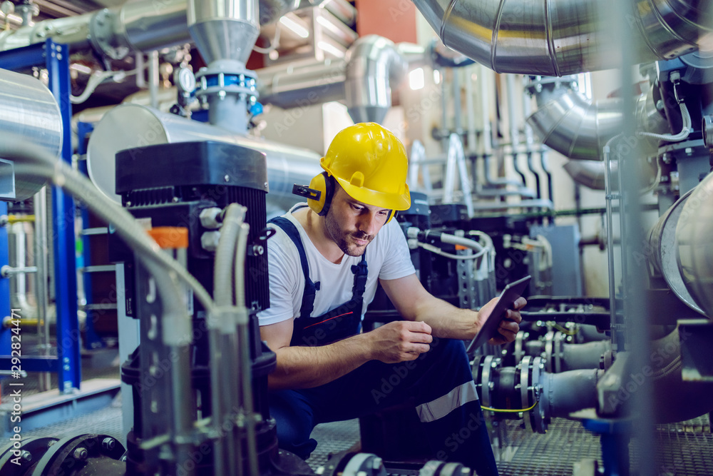 Fototapeta Focused plant worker in overalls, with protective helmet on head and antiphons on ears using tablet for checking machine while crouching.