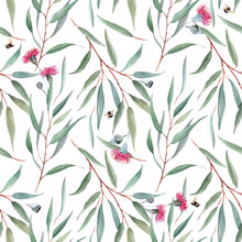 Watercolor Australian Floral V...