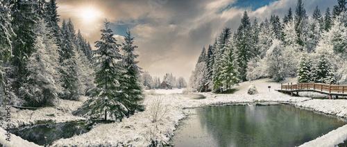 Foto auf Gartenposter Khaki Winter forest in the Carpathians on the mountain lake Vita.