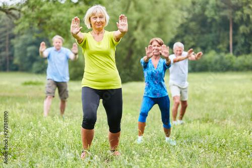 Senioren machen Qi Gong oder Tai Chi