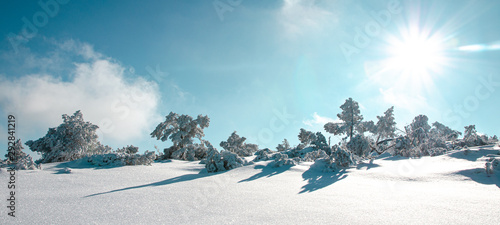 Foto auf AluDibond Licht blau Stunning panorama of snowy landscape in winter in Black Forest - winter wonderland