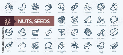 Photo Nuts, seeds and beans elements - minimal thin line web icon set
