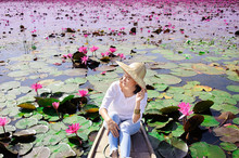 Asian Woman Wearing White Shirt And Grass Hat Sitting On Wooden Boat In Pink Lotus Pond, Thailand Tour Attraction In Pathumthani Province