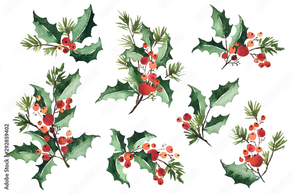 Fototapeta Christmas watercolor set of bouquet arrangings. Holly berries, green leaves and spruce