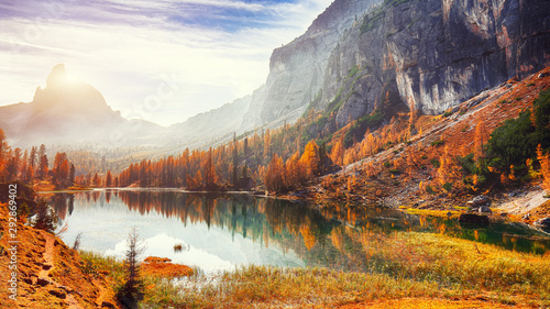 Fantastic autumn landscape Wallpaper Mural