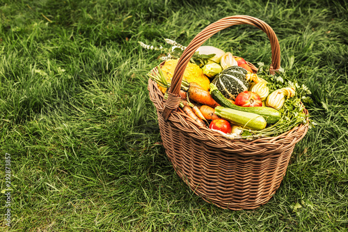 Photo sur Toile Pays d Asie Colorful vegetables in wicker basket outdoor on green grass