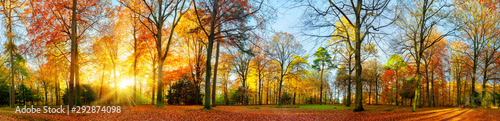 Canvas Prints Autumn Colorful autumn scenery in a park