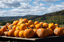 Pumpkins On A Wagon With Mountains And Blue Skys Behind