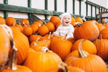 Child Picking Pumpkins At Pump...