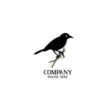 Bird T Shirt Logo Illustration Design Vector