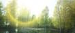 Secret pond and green spring birch