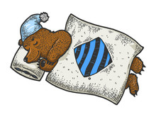 Cartoon Funny Sleeping Bear Sketch Engraving Vector Illustration. Tee Shirt Apparel Print Design. Scratch Board Style Imitation. Black And White Hand Drawn Image.