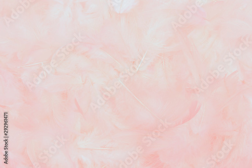 Stickers pour portes Roses beautiful soft pink feathers background