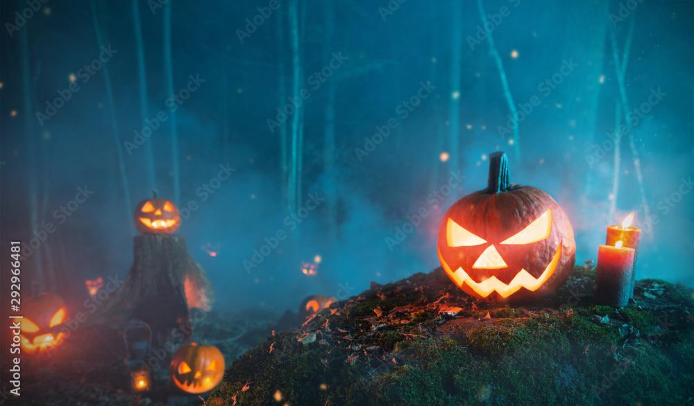 Fototapeta Spooky halloween pumpkins in forest
