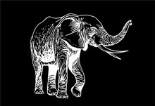 Graphical Elephant Isolated On...
