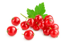 Red Currant Berries With Leaf ...