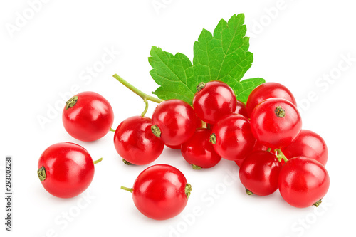 Slika na platnu Red currant berries with leaf isolated on white background