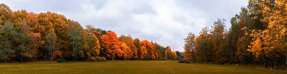 Warm autumn panorama of the lowland in the Park with yellowed and reddened trees stretching into the distance to the horizon with a blue sky covered with clouds, Indian summer in the forest, field