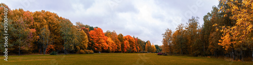 Obraz Warm autumn panorama of the lowland in the Park with yellowed and reddened trees stretching into the distance to the horizon with a blue sky covered with clouds, Indian summer in the forest, field - fototapety do salonu