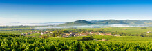 Panoramic View Of Brouilly Hil...