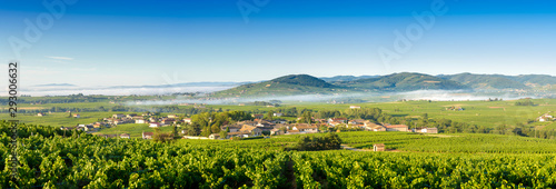 Poster Piscine Panoramic view of Brouilly hill, Cercie and Morgon village, Beaujolais, France