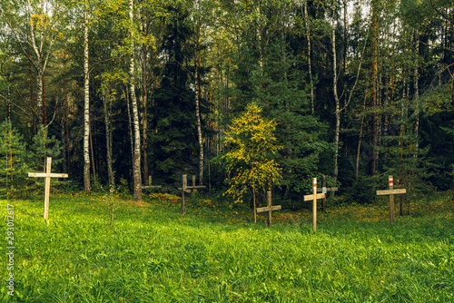Forest and Crosses at Mass Grave in Kurapaty, near Minsk, Belarus. Place of Mass Executions During Great Purge by NKVD