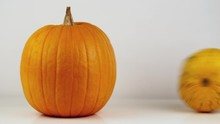 Big Pumpkin Is On The Table. A Small Pumpkin Appears On The Side. On White Background
