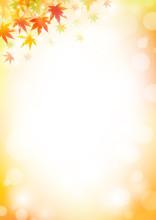 秋背景39