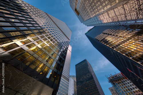 Garden Poster Toronto Scenic Toronto financial district skyline and modern architecture