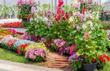 Brick Walkway With Beautiful Flowers On Side In Flower Garden