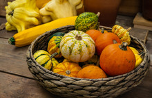 Arious Small Pumpkins Yellow, White, Orange And Green In A Huge Basket On A Background Of Yellow Squash And A Huge Zucchini  In The Farmers Market. Harvest Festival