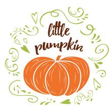 Little Pumpkin. Baby Shower Hand Drawn Design Template With Green Cute Ornament