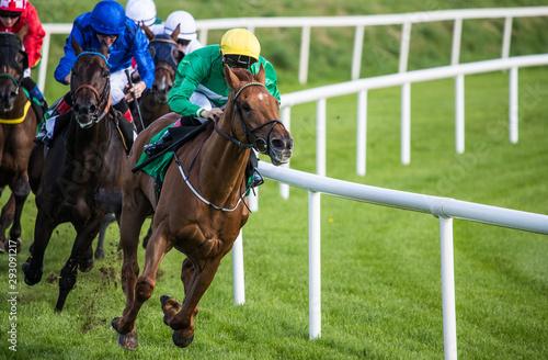 Fotografía Galloping race horses and jockeys racing towards the finish line